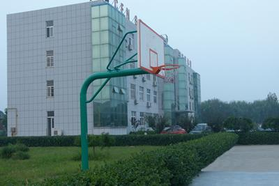 Outdoor Basketball Stand